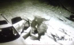 У Чернівцях на 34-річного чоловіка напали охоронці з газовими балончиками
