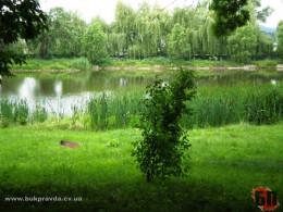 59-річний житель Заставни втопився у ставку, годуючи рибу