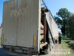 На Буковині поліція затримала вантажівку з деревиною без документів (фото)
