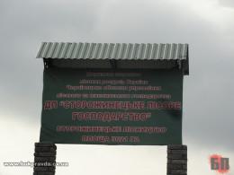 Сторожинецьке лісове господарство