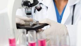 У вихованців НВК «Любисток» виявили ротавірусну інфекцію
