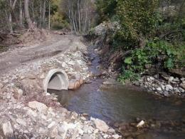 У Сторожинецькому лісгоспі створили тимчасові мости