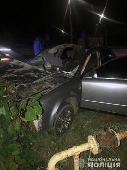 """На Буковині водій """"Audi"""" в'їхав у коня, загинув пасажир (фото)"""