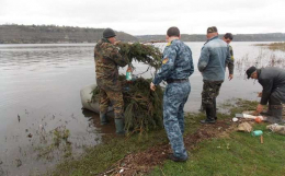 На Хотинщині у Дністровському водосховищі встановили штучні нерестові гнізда (фото)