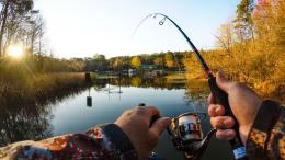 На Буковині рибалку засудили на один рік, бо впіймав рідкісні рибини