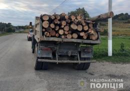На Буковині поліцейські виявили незаконне перевезення деревини
