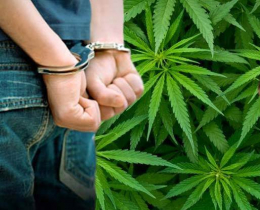 19-річний буковинець, який незаконно збував наркотичні засоби, відбуватиме покарання у місцях позбавлення волі