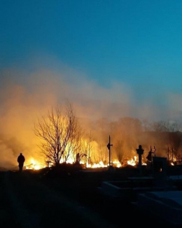 На кладовищі в Годилові сталась масштабна пожежа (фото)