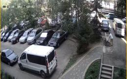 У Чернівцях невідома жінка вкрала дитячу сумку з телефоном: камера зафіксувала момент злочину