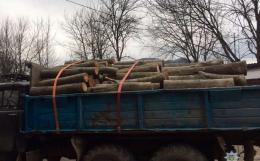 На Буковині затримали викрадачів деревини