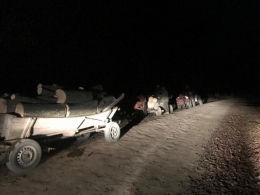 За незаконне вирубування дерев 4-ох буковинців затримали прикордонники