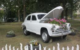 На Буковині з'явився автомобіль-клумба (фото)