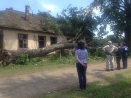 На Буковині через сильний вітер пошкодило чотири будівлі