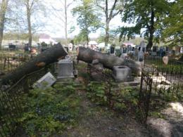 На Буковині на кладовищі під час вирубки дерев зруйнували старі надмогильні пам'ятники (фото)