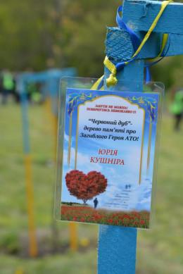 У Чернівцях в пам'ять про загиблих Героїв посадили червоні дубки (фото)