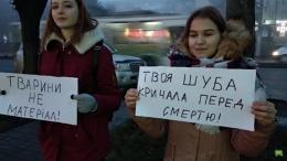 У Чернівцях активісти пікетували біля магазинів, де продають хутро (відео)