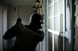 На Буковині затримали крадіїв-спільників