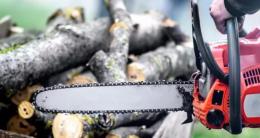 На Буковині знайшли мертвим чоловіка з ранами від бензопили