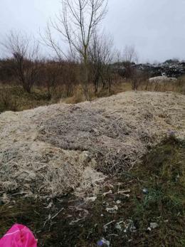 На Буковині на сміттєзвалищі виявили сотні кілограм відходів птиці