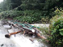Сторожинецькі лісівники відбудовують зруйновані негодою лісові дороги і мости