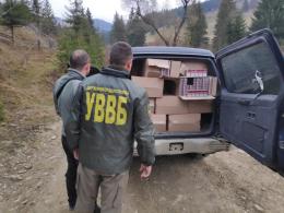На Буковині у прикордонному селі виявили позашляховик, забитий сигаретами