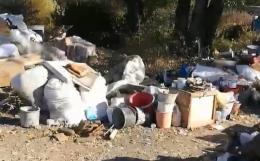 У Чернівецькій області на узбіччі траси міжнародного значення виявили масштабне сміттєзвалище (відео)