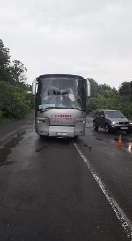На Буковині зіткнулись два легковики та рейсовий автобус, постраждало двоє людей (фото)