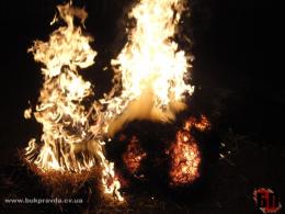 На Буковині горіло 1,5 гектарів сухої трави, вогонь перекинувся на будівлю