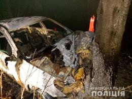 На Буковині авто врізалось у дерево і згоріло разом з водієм (фото)