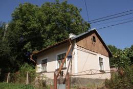 У Чернівцях жінка 15 років просить зрізати сусідський горіх, який пошкоджує її будинок