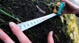 Буковинський фермер незаконно отримав в оренду 77 гектарів землі