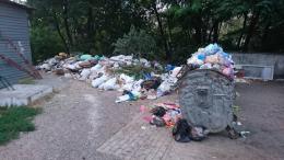Один з районів Чернівців відзначив День Незалежності з великими купами сміття (фото)