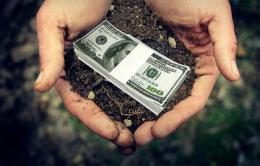 У Чернівцях суд зобов`язав підприємця сплатити майже півтора мільйона боргу за оренду землі