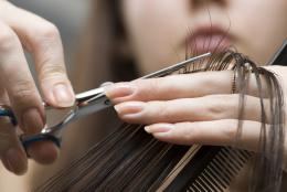У Чернівцях за нелегальну працю перукарок власник салону краси сплатить майже 600 тисяч гривень