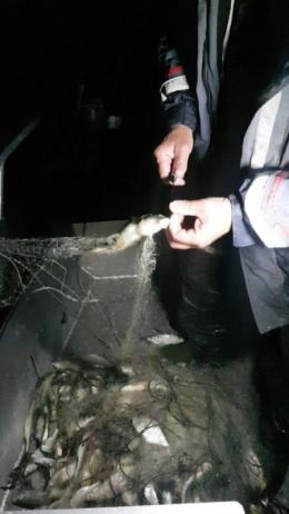 На Буковині рибоохорона виявила у Дністрі сітку для вилову риби довжиною понад кілометр