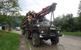 Вантажівку з деревиною без документів затримали на Путильщині
