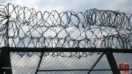 """Колонію на Буковині тримали """"злодії в законі"""": поліція викрила їх схеми і """"общак"""""""