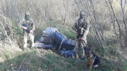 На Буковині контрабандисти втекли від пострілів прикордонників, покинувши цигарки