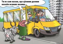 У Чернівецькій міськраді відновлять проведення конкурсів перевізників на міських маршрутах