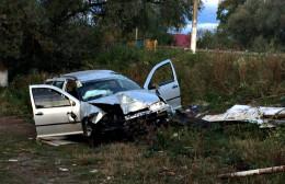 На Буковині п'яний водій врізався в білборд та злетів з дороги (фото)