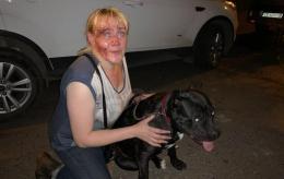 У Чернівцях агресивний чоловік побив жінку, собаку та їхнього захисника