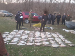 На Буковині затримали браконьєрів, які наловили риби на 1,6 мільйона гривень (фото)