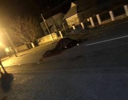 На Буковині вантажівка збила коня, очевидці повідомляють про смерть водіїв