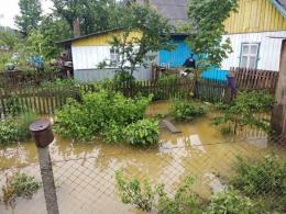 На Буковині через негоду повалені дерева та підтоплені будинки (фото)