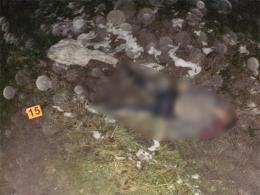 """На Буковині """"Фольксваген"""" на швидкості збив на смерть жінку, водій намагався втекти за кордон (фото)"""