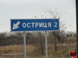 Остриця