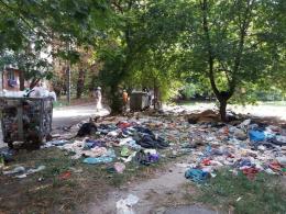 У Чернівцях на керівника ЖРЕПу склали протокол за купу неприбраного сміття