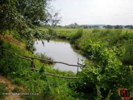 Чоловіка, який в Садгорі захопив землю та обладнав ставок, зобов'язали повернути земельну ділянку