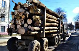 На Буковині затримали лісовоз з нечіпованою деревиною