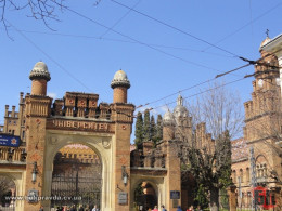 Резиденцію митрополитів Буковини на День Незалежності відкриють для безкоштовного огляду